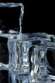 5 ice cubes macro 3 — Stock Photo