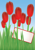Red tulips in grass 1 — Stock Vector