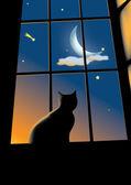 Cat in the window — Stock Vector