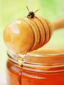 Honey drizzler with bee — Stock Photo