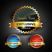 Excluxive label vector — Wektor stockowy