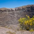 Vesuvius crater — Stock Photo #7209857