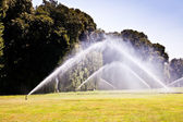 Luxury garden: irrigation — Stock Photo