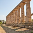 Paestum temple - Italy — Stock Photo #7487393