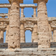 Paestum temple - Italy — Stock Photo #7889975