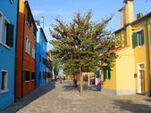 Street in Burano — Stock Photo
