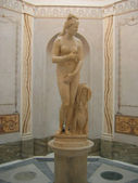 Capitoline Venus — Stock Photo