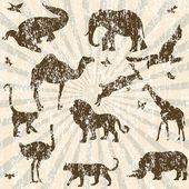 Retro grunge background with animals silhouettes — Stock Photo
