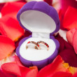 Wedding rings in a box — Stock Photo #7399589