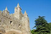 Santa Maria da Feira castle — Stock Photo