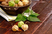 Physalis fruits — 图库照片