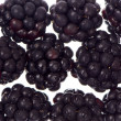 Blackberry background — Stock Photo #6989927