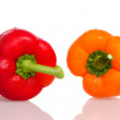 Two fresh peppers — Stockfoto