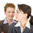 Portrait of two women in office clothes — Stock Photo