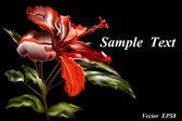 Rosa china-gibiskus — Vector de stock