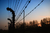 The Oswiecim Fence — Stock Photo