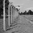 Auschwitz Birkenau concentration camp. - Stock Photo