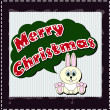 Merry christmas wish with nice rabbit — Stock Photo