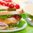 Close up sandwich - Stock Photo