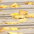 Autumn leaves on a wooden bridge — Stock Photo