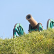 The old fashioned cannon on a hill — Foto Stock