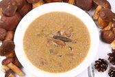 Zupa grzybowa — Zdjęcie stockowe