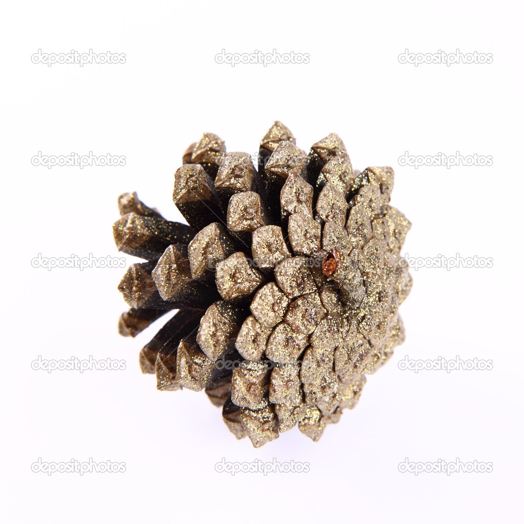 Conifer cone covered with gold glitter   Stock Photo #7238822