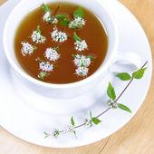 Grüner tee mit pfefferminze — Stockfoto