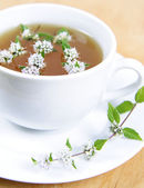 Green tea with peppermint — Stock Photo