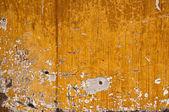 Stock macro photo of the texture of wood. — Stock Photo