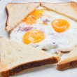 prepared egg — Stock Photo