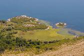 Swamp in Skaradrsko lake - Montenegro — Stock Photo