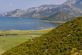 Skadarsko lake. Montenegro. — Stock Photo
