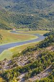River to Skadarsko lake - Montenegro — Stock Photo