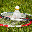 Stock Photo: Badminton