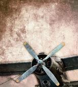 Vintage çift kanatlı — Stok fotoğraf
