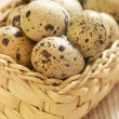 Quail eggs in basket — Stock Photo #7955214