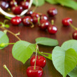 Sweet cherry — Stock Photo #7955224