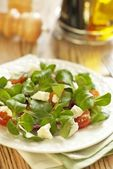 Tomatoes salad with cheese — Stock Photo