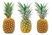 Set of Pineapple isolated on the white background. — Stock Photo