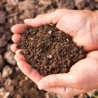 Stock Photo: Soil in hands