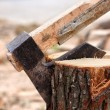 Axe chopping log — Stock Photo