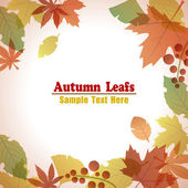 Autumn Foliage Leafs Frame — Vecteur