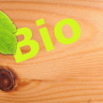 Bio concept — Stock Photo #7292174