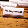 Management — Foto Stock #7292260