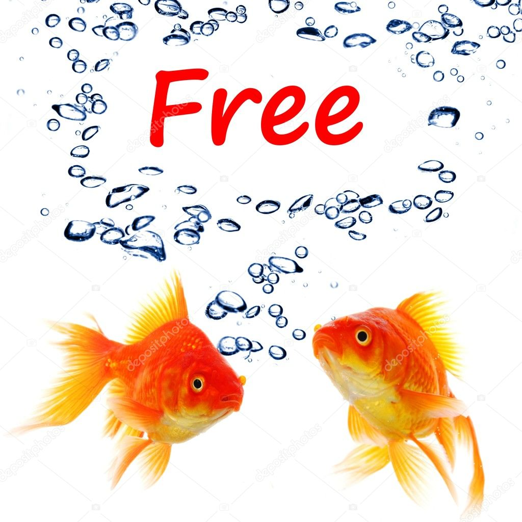 Word free and goldfish showing sale or discount concept — Stock Photo #7292333