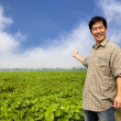 Happy asian farmer showing his farm — Stock Photo