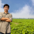Stock Photo: Chinese middle aged farmer and his farm