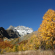 Autumn in the Caucasus - Stock Photo