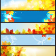 Vector Banners Set / Beautiful Autumn Day — Stock Vector #6960259